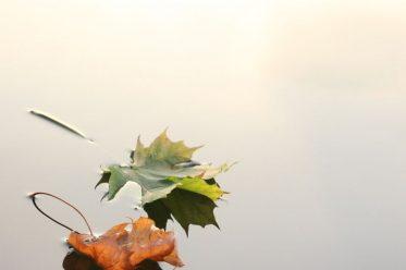 Jesenska nega kože, nega kože jeseni
